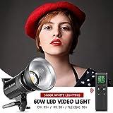Neewer SL-60W LED Lumière Blanche 5600K, 60W CRI 95+, TLCI 90+ avec Déclencheur à Distance,Réflecteur,Monture Bowens pour Vidéo, Photo des Enfants, Photographie Extérieure