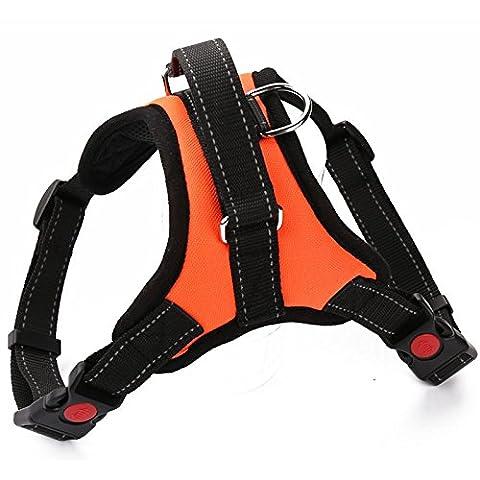 Shineblue Harnais pour chien en nylon réglable pour chiens de toutes tailles Quotidiennes Marche Jogging Training