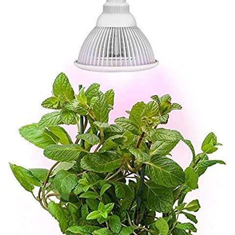 Silla de hidropónicos LED reflector, Morpilot crecimiento de plantas luces E27 crecimiento bombilla para proyector de jardín invernadero en 12 W 3 bandas de la mejor crecimiento combinación (660 nm y 630 nm rojo y 460 nm