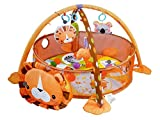 #9: Toyshine Lion Activity Gym and Ball Pit with 30 Balls