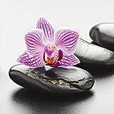 Artland Qualitätsbilder I Glasbilder Deko Glas Bilder 20 x 20 cm Wellness Zen Stein Foto Grau A6ML Spa-Konzept mit Zen Steinen und Orchidee