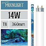 Arcadia Ocean Moonlight 14 Watt Lampe Aquarium Leuchtstofflampe