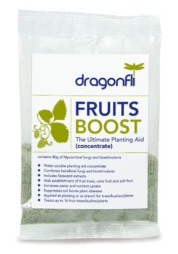 fruits-boost