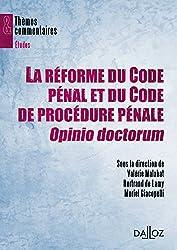 Réforme du code pénal et de procédure pénale, Opinio doctorum - 1ère édition: Thèmes et commentaires