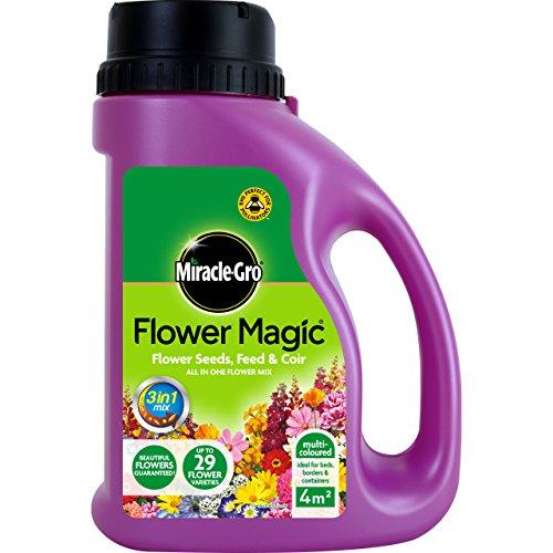 Miracle-Gro 1 kg Semi di fiori magici con mangime e brocca di cocco (Multi-c.