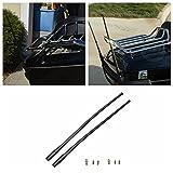 Sedeta® 2pcs Antenne für Harley Davidson Modelle Schrauben Plug & Play Compact Durable Neu