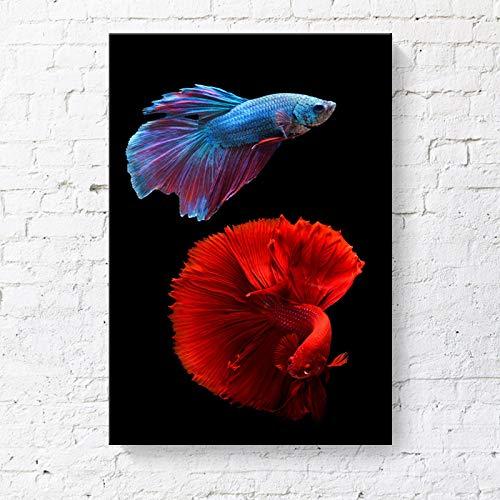 RTCKF Pittura Decorativa Betta Color Pesce Tropicale Cornice Pittura Appartamento Hotel Tela Pittura Senza Cornice A1 30cm * 40cm