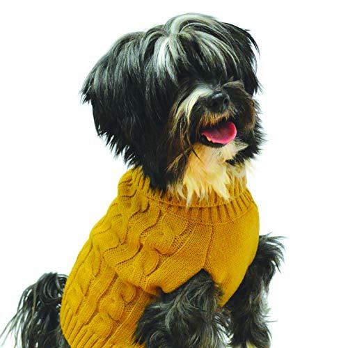 Buster & Beau Charlton - Jersey para Perro, por Happy Pet