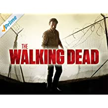 The Walking Dead - Staffel 4 [dt./OV]