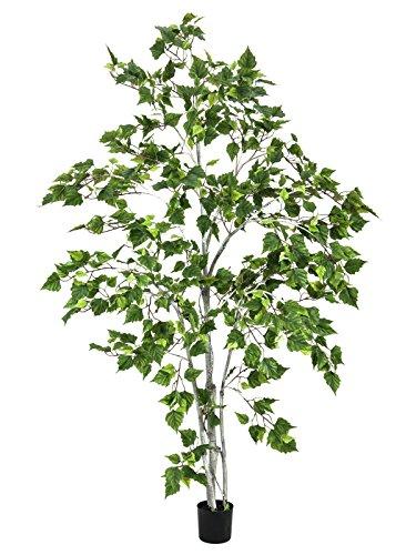 artplants – Künstliche Weißbirke mit 800 Blättern, getopft, 180 cm – Deko Birken Baum/Kunstbaum