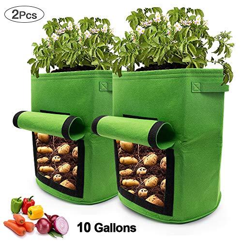 SPECOOL Kartoffel Pflanzsack, 2 pc Klettverschluss Tragegriffen Wachstumstasche 10 Gallonen Vecro Fenster Gemüsebeutel doppelschichtig, atmungsaktiv Vliesstoff (Grün)