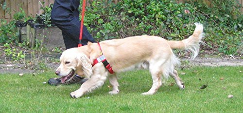 anti-pull-harness-front-leading-stop-pull-fitting-dogs-weighing-between-18-35-lb-8-16kg-girth-size-1