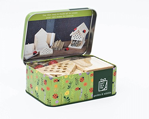 Gift in a Tin Make Your Own Insektenhaus. Tolles