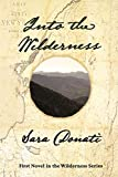 Into the Wilderness by Sara Donati front cover
