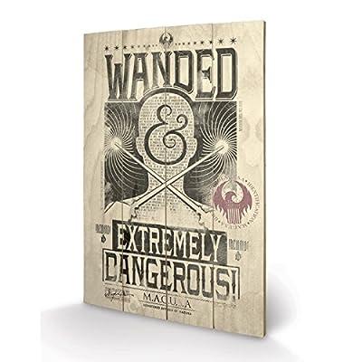PYRAMID - Panneau en Bois Fantastic Beasts Extremely Dangerous