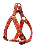 Lupine 3/10,2cm Go Go Gecko Step In Hundegeschirr, für mittelgroße Hunde