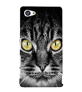 Cat with big eyes 3D Hard Polycarbonate Designer Back Case Cover for Sony Xperia Z5 Premium :: Sony Xperia Z5 Premium Dual