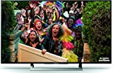 Sony KD-49XD8005 123 cm (49 Zoll) Fernseher (Ultra HD, Smart TV)