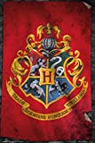 Harry Potter Hogwarts Flag Poster Standard