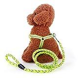 BSJY Reflektierende Dog Walking Geschirr Verstellbare Easy Walk Hundegeschirr und langlebigem Nylon Hundegeschirr und Leine Set für Haustiere