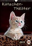 Kätzchen - Theater (Wandkalender 2019 DIN A4 hoch): Wunderschöne Kätzchen-Bilder. (Planer, 14 Seiten ) (CALVENDO Tiere)