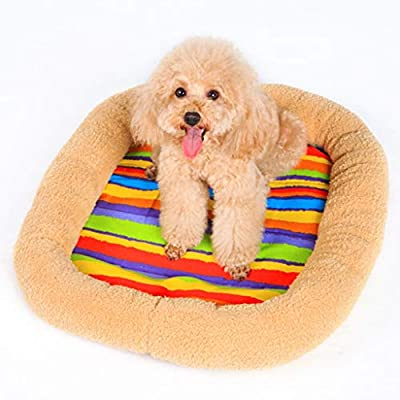 ZXPzZ Dog Mat - Pet Nest - Cat Mat - Mattress Dog Cage Pad - Kennel - Four Seasons Available by ZXPzZ