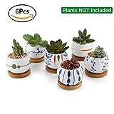 T4U Sukkulenten Töpfe Kaktus Pflanzen Töpfe Mini Blumentöpfe mit Untersetzer, Lancao Series Sammlung, 6er Set