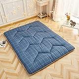 MSM Gesteppter Matratze Pad, Tatami Bodenmatratze Dick Weich Komfort Klappbar Schlafzimmer Wohnzimmer Schlafen Futon Bett Roll-E 180x200x5cm