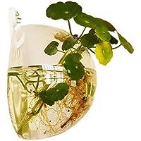 Jungen 10 cm Acrílico Mini transparente redondo soporte de pared pecera tanque Flores Plantas Jarrón Decoración