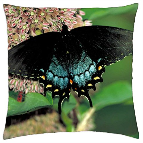Really Nice Butterfly - Throw Pillow Cover Case (18\