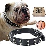 RAINSGIFT TEEMERRYCA Hundehalsband Leder Nieten Breit für Kleine Hund Große Hunde PU Haltbarer Hundehalsband