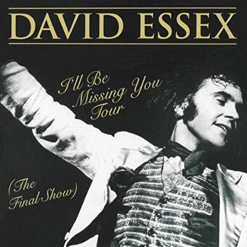 David Es Ill Be Missing You Tour The Final Show