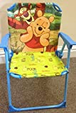Best new Beach Chairs - DISNEY WINNIE POOH AND FRIENDS PATIO FOLDING CHAIR Review