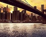 OKOUNOKO Pittura Olio Digitale Dipingere con I Numeri New York sotto Il Ponte Tele Immagini Kit Fai da Te Impostato Camera Arredamento Frameless 40X50Cm