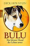Bulu: Ein kleiner Hund, der Leben rettet - Dick Houston