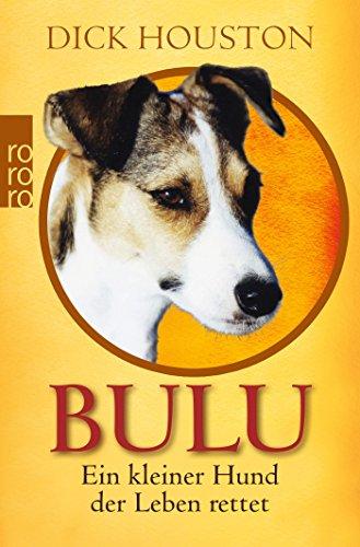 Bulu: Ein kleiner Hund, der Leben rettet -