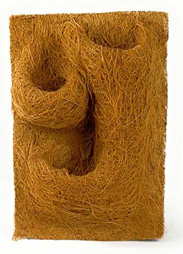 proflora Kokosfaser Rückwand Terrarium Kokosmodul 20 x 30 cm mit 3 Pflanztaschen - Design 1