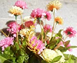 Colorful Daisy Artificial flower