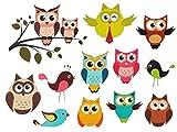 13 tlg. Set: Wandsticker / Sticker - lustige Eulen - auch als Fensterbild / Fenstersticker - Tiere Vögel - selbstklebend wiederverwendbar - Wandtattoo Aufkleber - Wandaufkleber für Kinderzimmer auf Ast - Eule