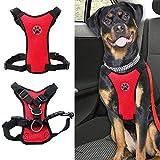Best Dog Car Harnesses - MASO Dog Safety Vest Harness Pet Dog Adjustable Review