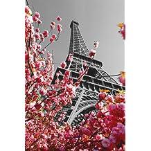 """Póster de Paris """"La Torre Eiffel"""" (61cm x 91,5cm) + 1 póster sorpresa de regalo"""