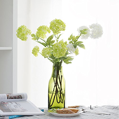 Fine-mouth American Transparent Glass Vase/green, Clean, Simple, Living Room, Hydroponic Flower Decoration-j