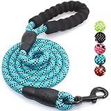 XDYFF Soft Griff Hundeleine Geschirr pet Training Walking Leash Kleine, mittlere und große Hunde mit reflektierenden Ketten,Blue