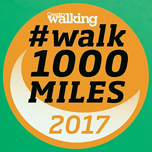 Walk 1000 Miles 2017 Logo T-shirt, Uomo Verde smeraldo