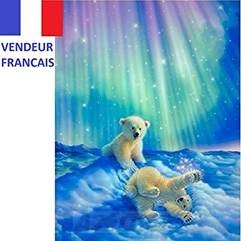 5D Broderie diamant toile entière, kit complet VENDEUR FRANÇAIS (ours 40 x 50)