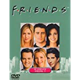 Friends - Die komplette Staffel 9