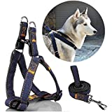 Triumilynn Dog Leash Harness Set, Heavy Duty Dog Cat Harness Leash For Small Medium Large Breed, No Choke And Comfort, Denim Adjustable Cat Leash Harness For Walking Training(2. 5Cm Black)