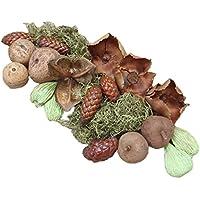 Deko Mix exotisch Grün Natur / Potpourri Früchte Dekokugeln Kranz Gesteck Geschenke