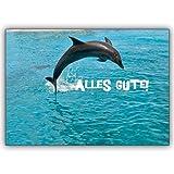 1 Geburtstagskarte: Alles Gute : Die Tierfoto Glückwunschkarte mit springendem Delfin