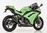 Hurric Auspuff Pro 2 Doppelrohr EG/BE Schwarz Matt Kawasaki Ninja 300 EX 300A